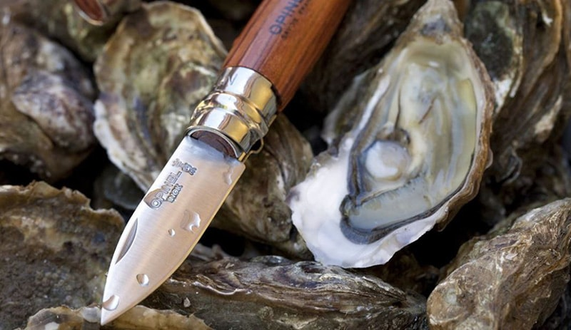 Best Oyster Knives Brands