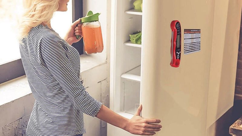 Best Refrigerator Thermometers Review