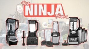 Top 12 Best Ninja Blenders Review 2020