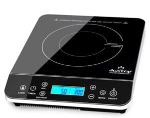 Best Portable Induction Cooktop (1)