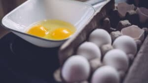 Best Egg Substitute Review 2020