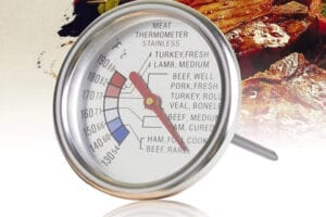 Best Meat Thermometer Review