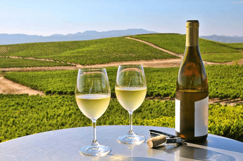 Top Rated Best White Wine